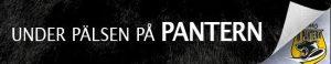 under-palsen-pa-pantern
