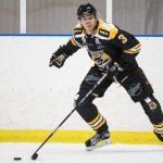 161204 Panterns Jacob Cederholm under ishockeymatchen i Hockeyallsvenskan mellan Pantern och AIK den 4 december 2016 i Malm?. Foto: Petter Arvidson / BILDBYR�N / kod PA / 91530